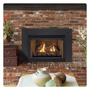 fireplaces-inserts-300x300